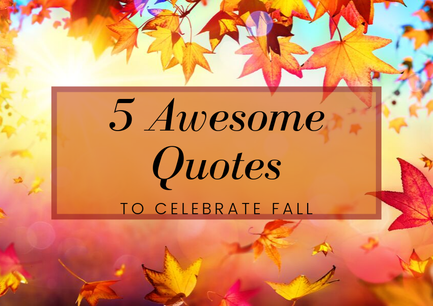 5 Awesome Quotes To Celebrate Fall Hello Creative Me